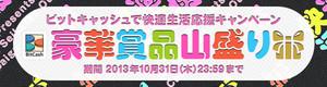 Bnr_550147_20131010_bitcashcp